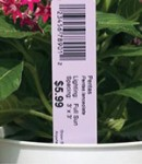 Thermal Potstick Garden Tags